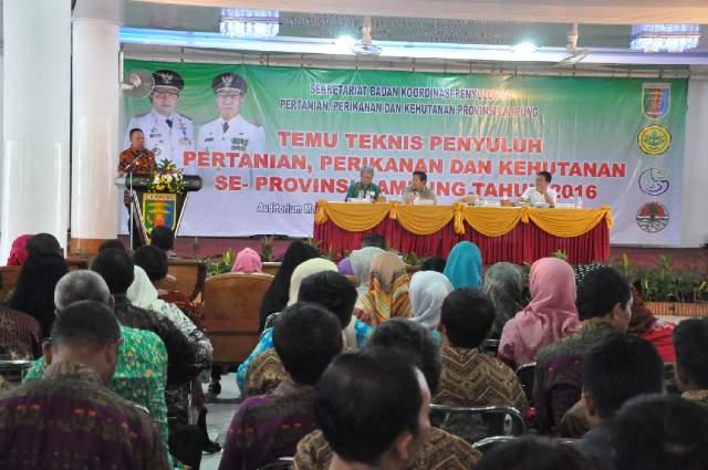 Lampung percepat pembangunan